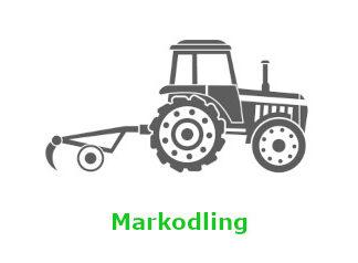 Markodling